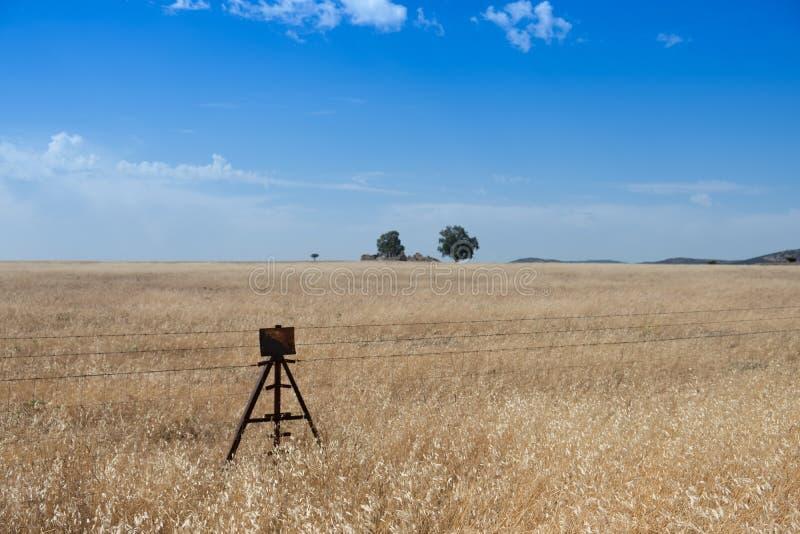 Grassland, Prairie, Ecosystem, Sky Free Public Domain Cc0 Image
