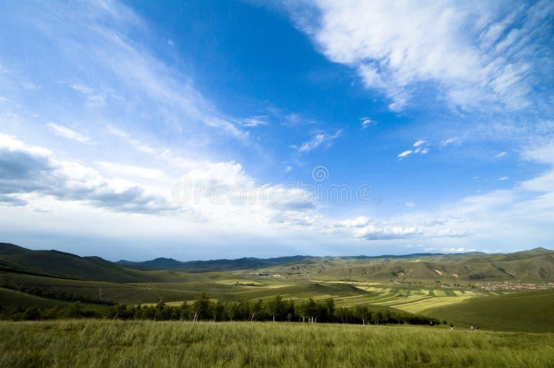 Grassland scenery royalty free stock photo