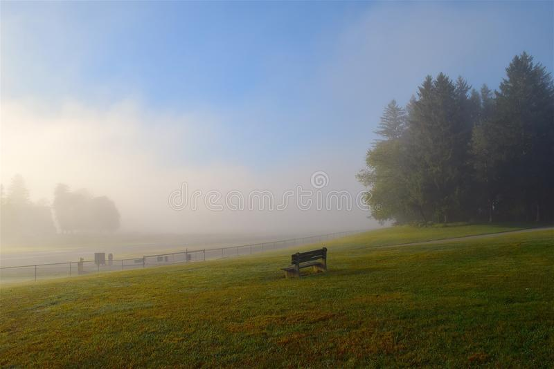 Grassland, Sky, Mist, Morning royalty free stock photo