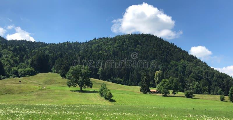 Grassland, Sky, Nature, Mountainous Landforms Free Public Domain Cc0 Image