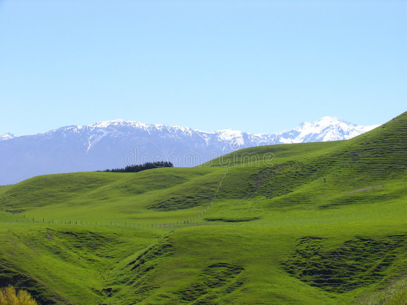 Grassland And Snow Mountain royalty free stock images