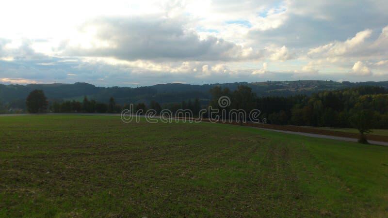 Grassland stock images
