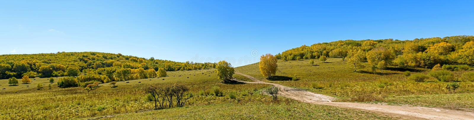 Grassland and unsurfaced road. In the autumn .This photo was taken in Saihaiba National Forest Park ,Bashang Grassland ,Hebei province, china stock images