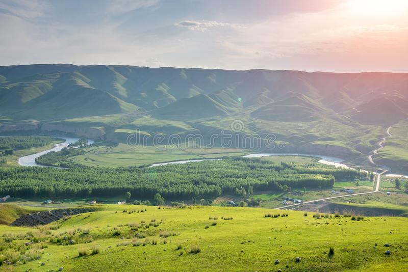 Grassland and valley river forest in sunlight with winding road royalty free stock images