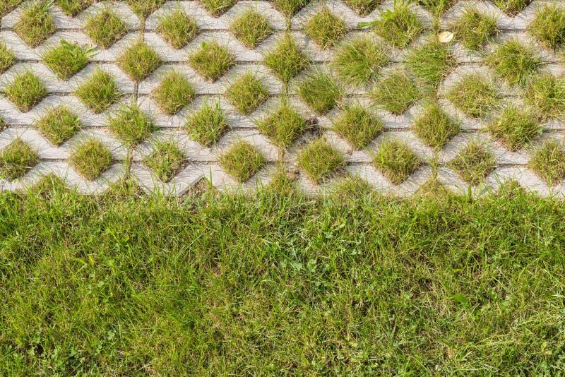 Grassstones als Abgrenzung stockfoto