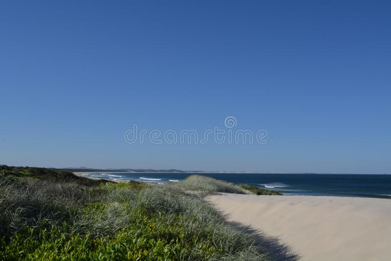 Grassy Beach på St Leondards, Victoria, Australien royaltyfria bilder