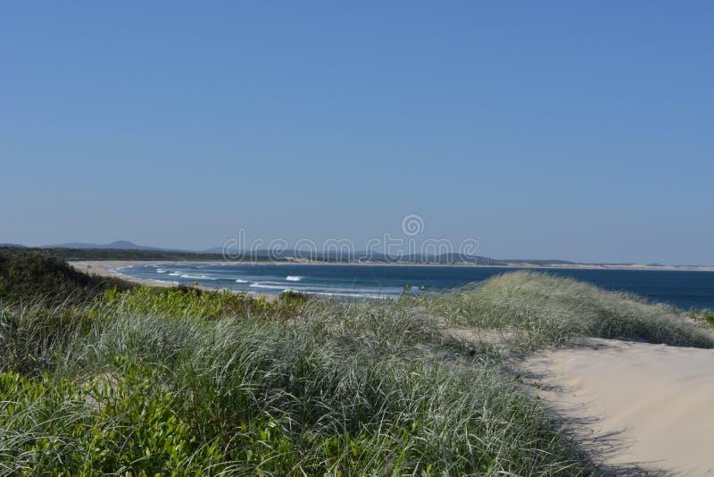 Grassy Beach på St Leondards, Victoria, Australien arkivbilder