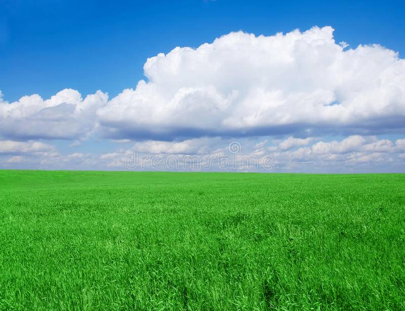Grassy field stock image image of cloud space plain 9455931 grassy field voltagebd Images