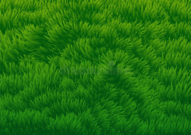 grassy field background. Download Grassy Field Background-Vector Illustration Stock Vector -  Of Environment, Freshness: Grassy Field Background S