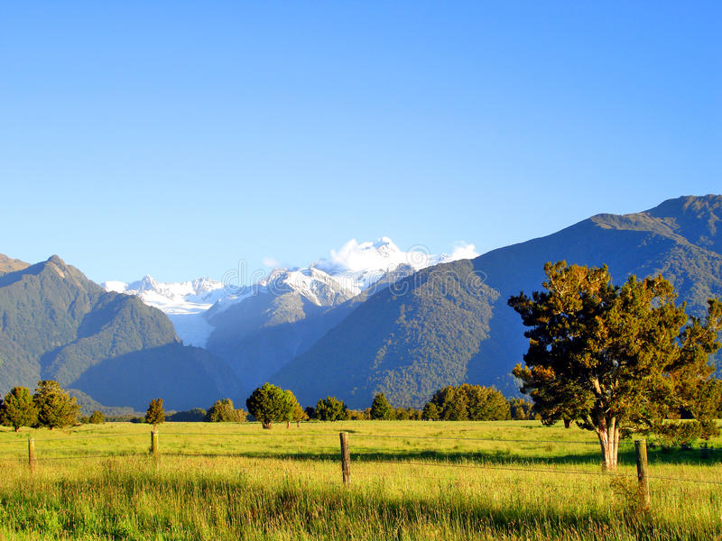 Grassy field in front of Mountains, New Zealand royalty free stock photo