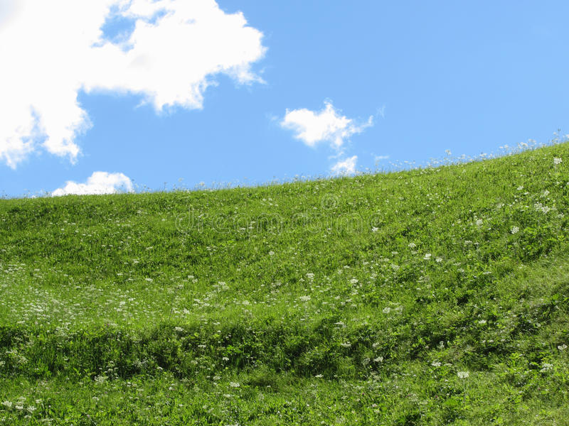 Grassy field at the rolling hill against the blue sky.  stock photography