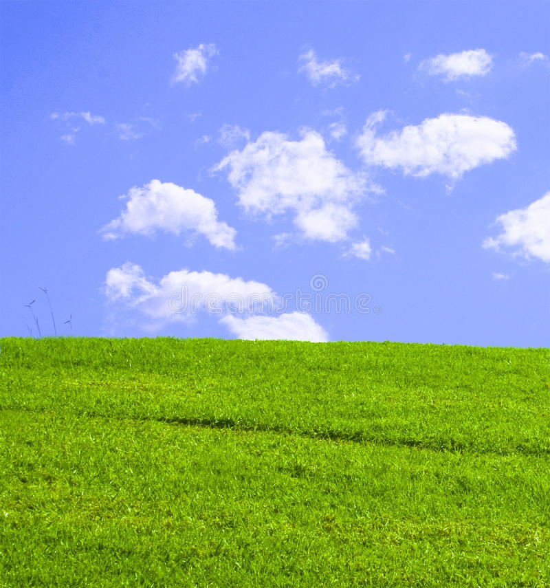 Download Grassy Green Hill stock image. Image of grass, hill, textures - 14067699