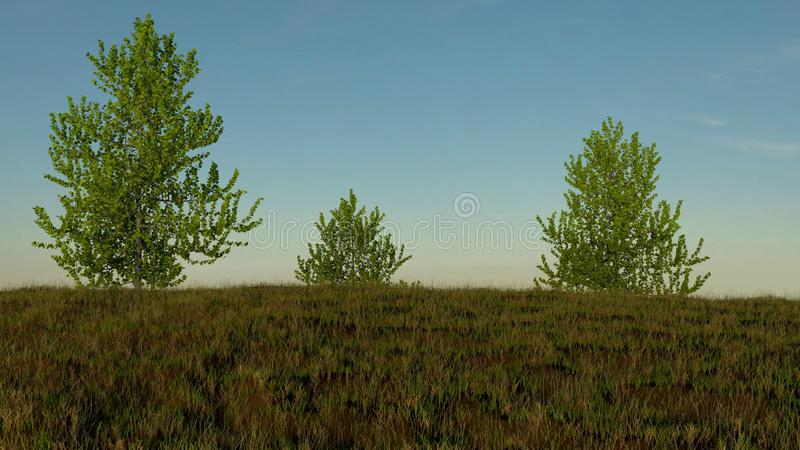 Grassy hill with three trees showing from over it. 3D render royalty free illustration