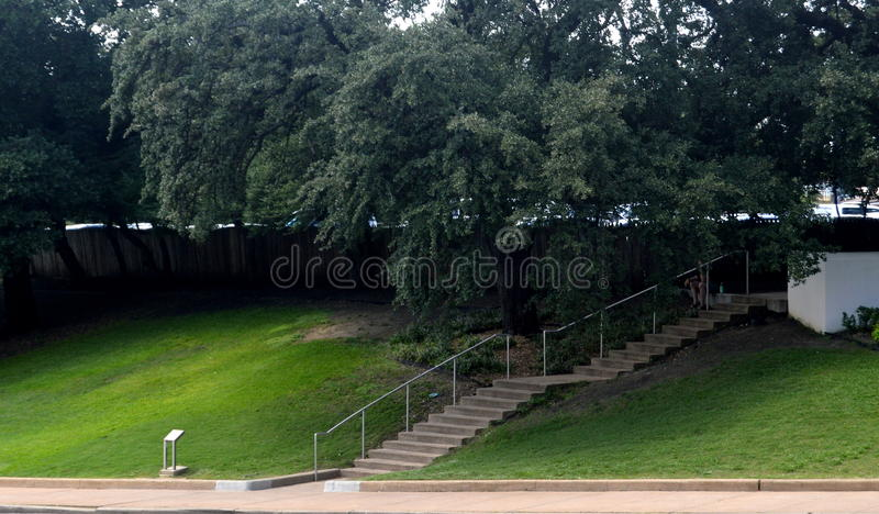 Download The Grassy Knoll Stock Photo - Image: 80145046
