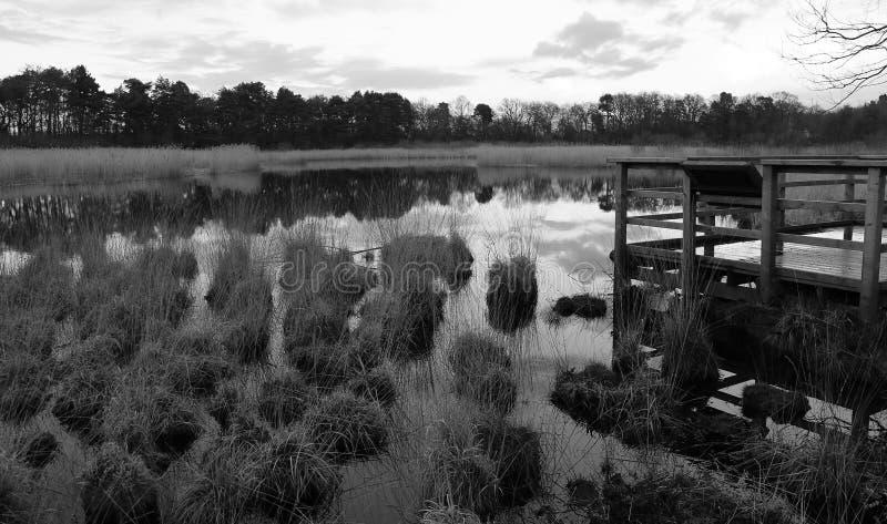 Grassy Lake B&W stock photos