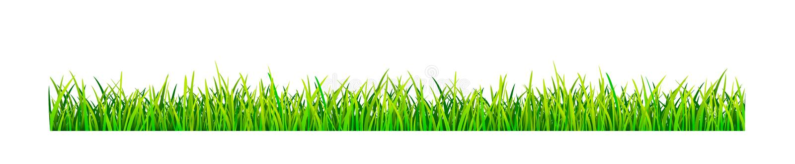 Grassy lawn. On a white background. Green grass banner vector illustration