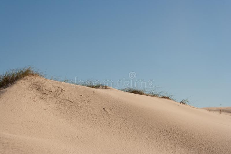 Grassy top of sand dune royalty free stock photography
