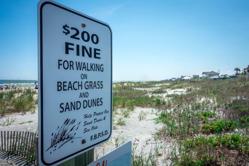Grassy windy sand dunes on the beach stock photo