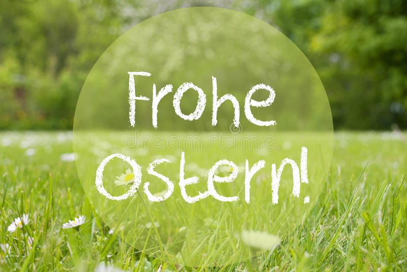 Grasweide, Daisy Flowers, de Middelen Gelukkige Pasen van Frohe Ostern stock foto's