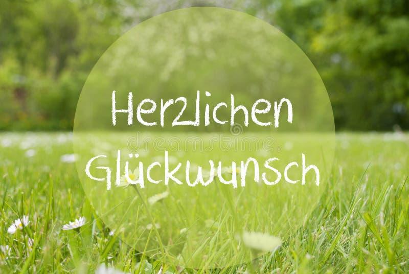 Grasweide, Daisy Flowers, de Middelengelukwensen van Herzlichen Glueckwunsch royalty-vrije stock foto's