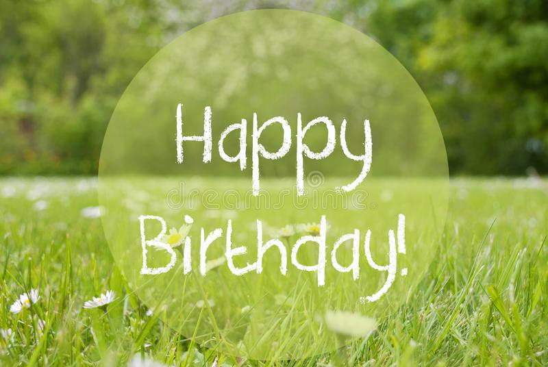 Grasweide, Daisy Flowers, Tekst Gelukkige Verjaardag royalty-vrije stock foto's