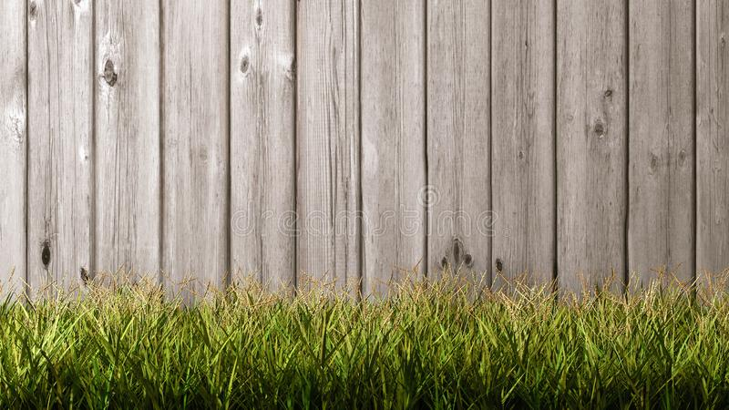 Grasweide met Houten Achtergrond