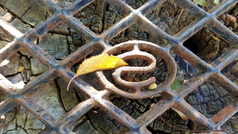 Grata arrugginita ruvida del metallo con il modello del rombo e la singola foglia gialla fotografia stock libera da diritti