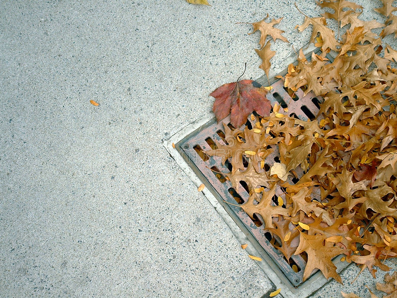 Grate and leaves 2 stock photo