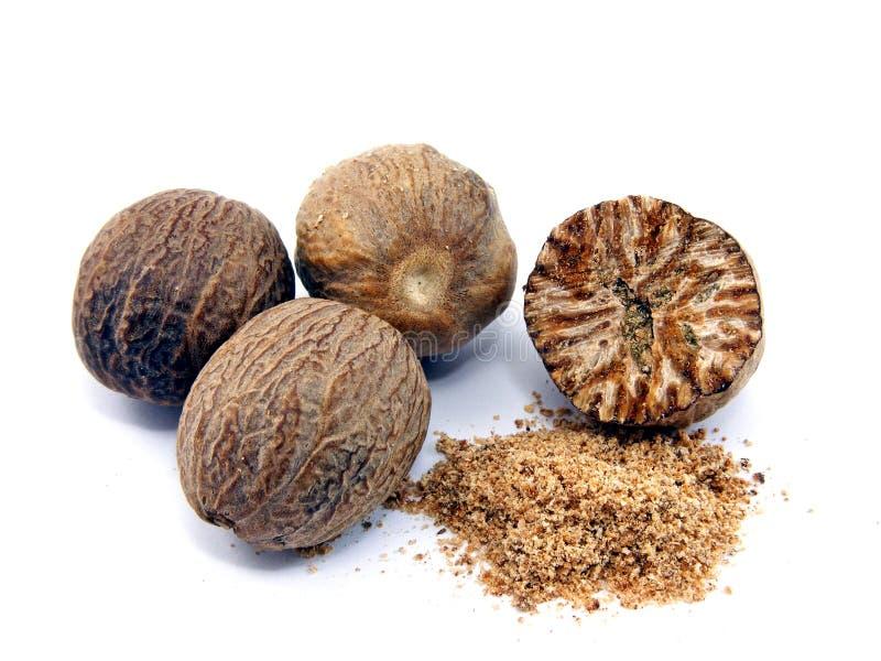 grated nutmeg arkivfoto
