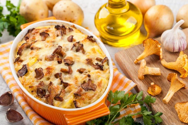 Gratin картошки с грибами лисичек стоковое изображение rf