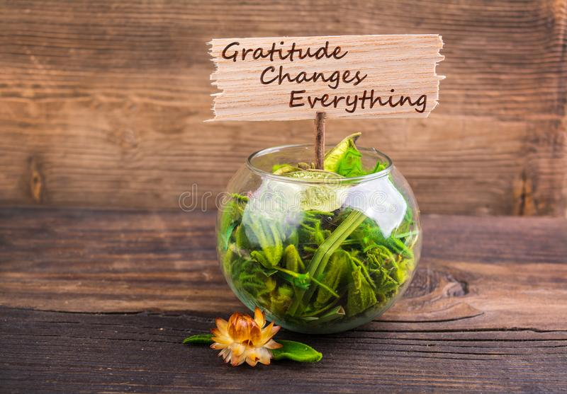 Gratitude changes everything royalty free stock photo
