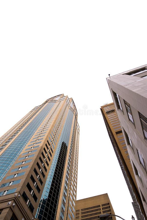 Download Grattacieli Di Seattle Su Bianco Fotografia Stock - Immagine di città, seattle: 7302630