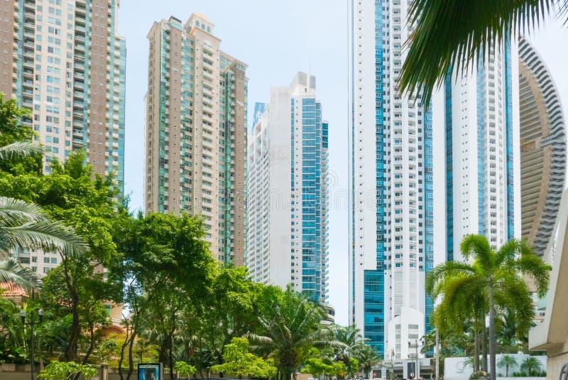 Grattacieli nel distretto Panamá di Punta Paitilla nel da soleggiato immagine stock libera da diritti