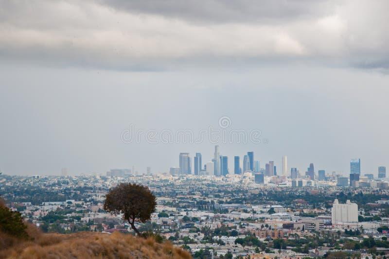 Gratte-ciel de Los Angeles image libre de droits