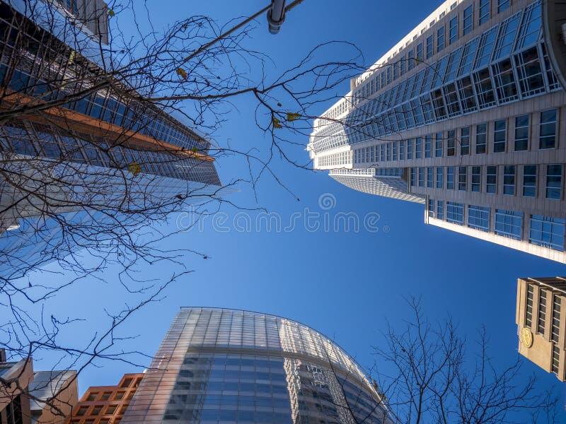 Gratte-ciel un jour ensoleillé dans la ville photographie stock libre de droits