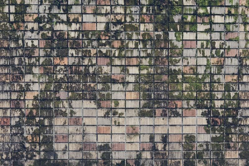 Graue Farbe des Felsenmusters und MOS-Anlage der dekorativen ungleichen gebrochenen wirklichen Steinwandoberfläche des modernen A stockbild