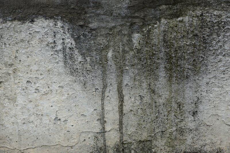 Graue Steinbeschaffenheit von der schmutzigen nass befleckten Betonmauer lizenzfreies stockbild