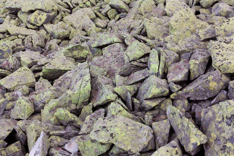 Graue Steine mit grünem Moos stockfotografie