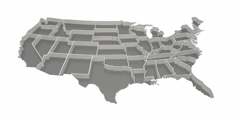 Graue umgekehrte Vereinigte Staaten bilden ab stock abbildung
