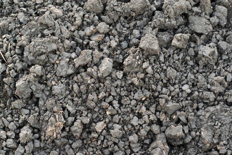Grauer Boden, Bodenklumpen, Bodenklumpenhintergrund stockfotos
