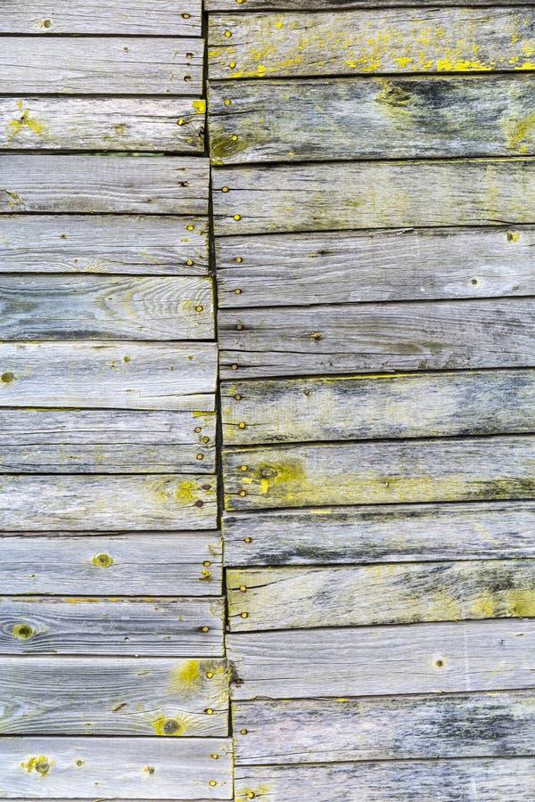 Grauer hölzerner Hintergrund mit gelber Farbschalenfarbe stockbilder