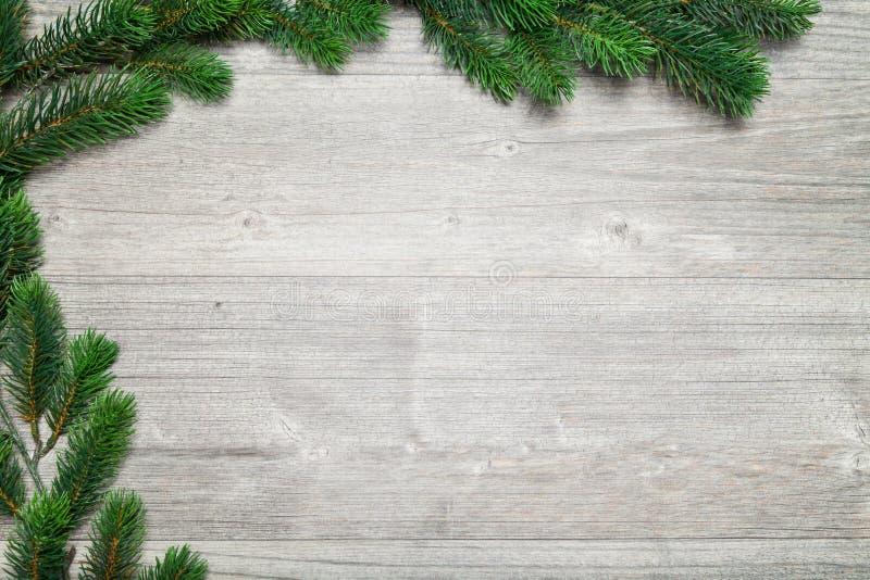Grauer hölzerner Hintergrund- und Tannenbaum stockbilder