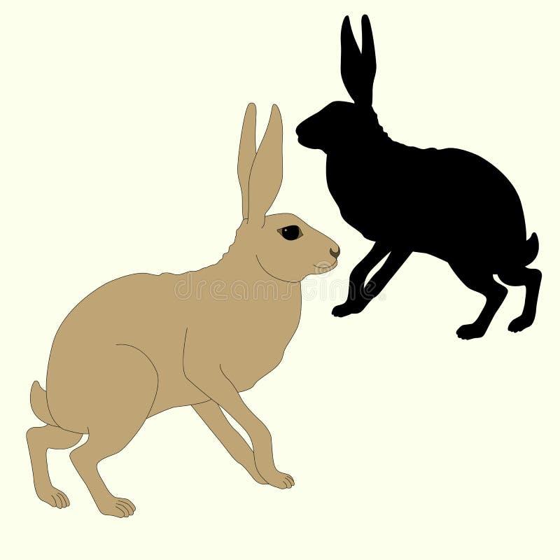 Grauer Hase sitzt ein schwarzes Schattenbild lizenzfreie abbildung