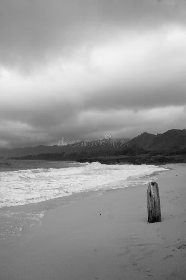 Grauer Tag am Strand lizenzfreies stockfoto