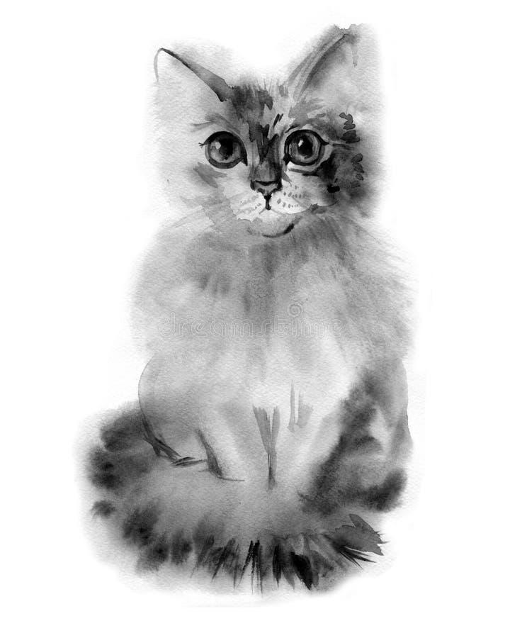 Graues flaumiges Katzenporträt des Watercolour Hand gezeichnete Abbildung lizenzfreie abbildung