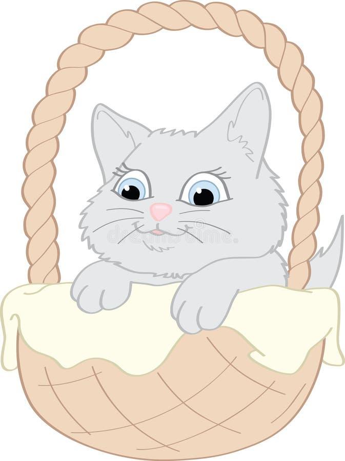Download Graues Kätzchen stockfoto. Bild von blau, decke, glücklich - 27730160