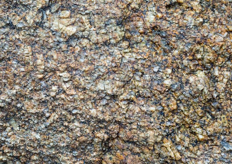 Graues natürliches Beschaffenheitslicht der Steingranitbeschaffenheitstonware mit dem dunklen ungleichen verwitterten Designdekor lizenzfreies stockfoto