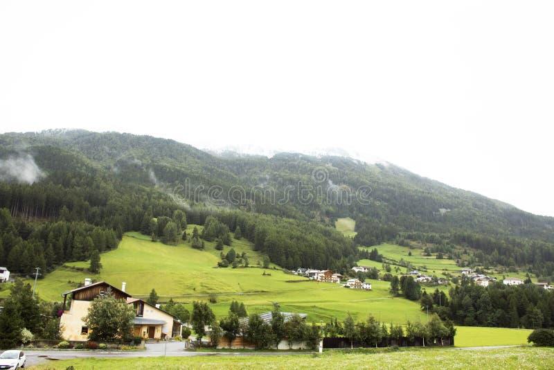 Graun im Vinschgau by i denalt dalen royaltyfri bild