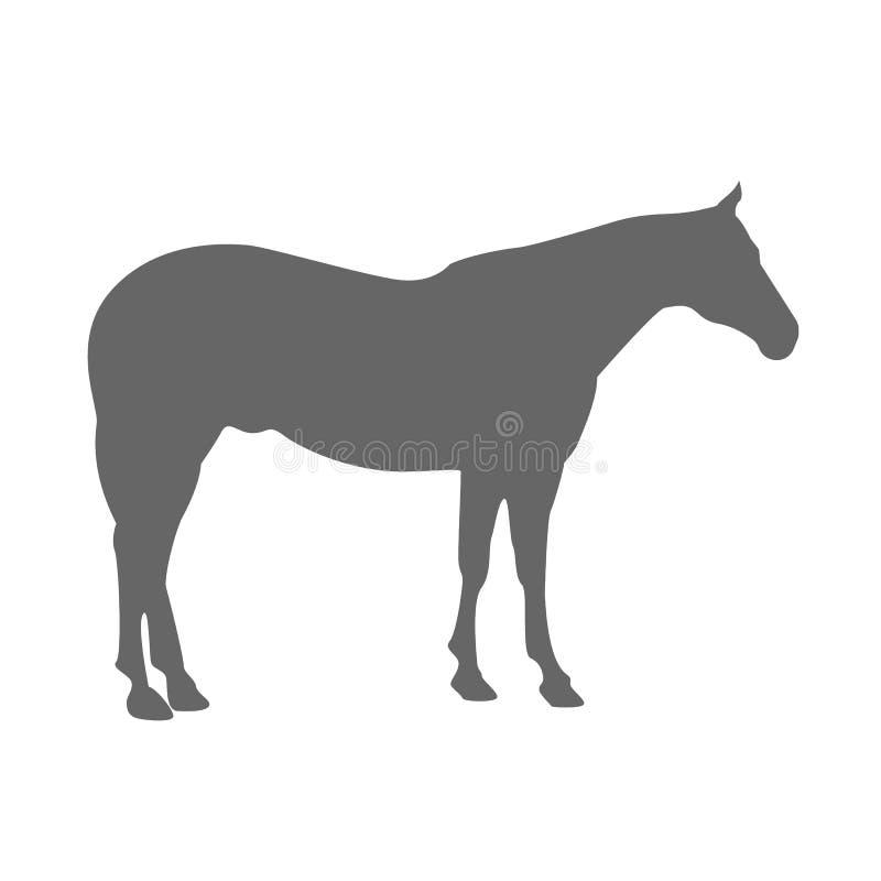 Grauschimmelschattenbild stock abbildung