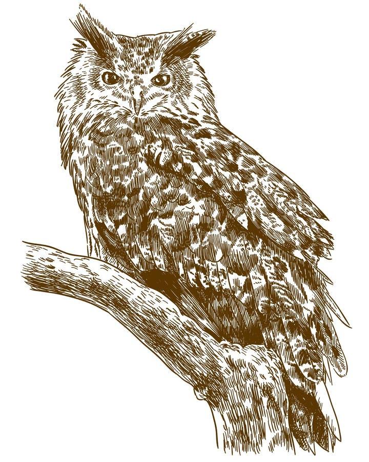 Gravando a ilustração de tiragem da coruja de águia ilustração stock